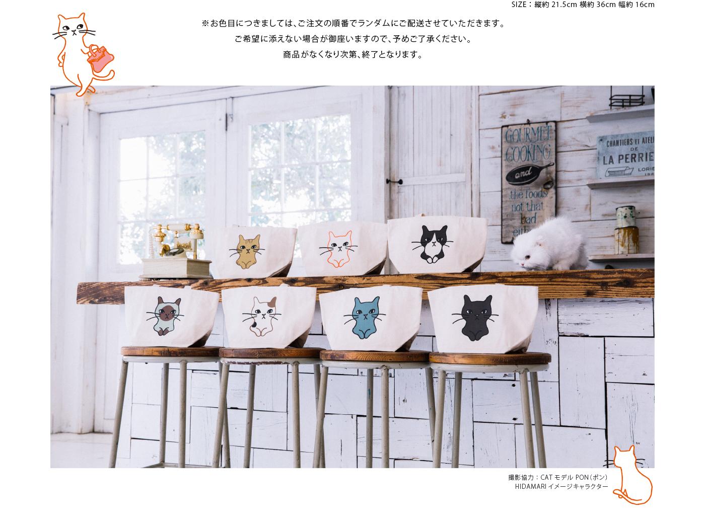 撮影協力:CATモデル PON(ポン)HIDAMARIイメージキャラクター