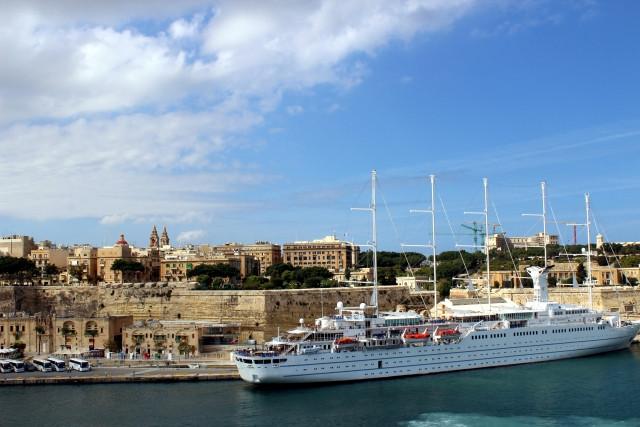 エジプトからやってきたマルタ島の猫
